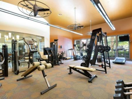 State-of-the-Art Fitness Center | Apartment Homes in San Antonio, TX | Broadstone at Colonnade