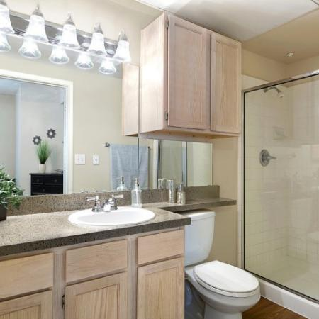 Spacious Master Bathroom | Apartments Homes for rent in San Antonio, TX | Escalante