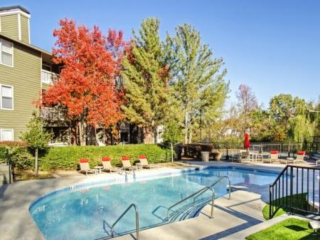 Sparkling Pool | Apartments in Hermitage, TN | Highlands at the Lake