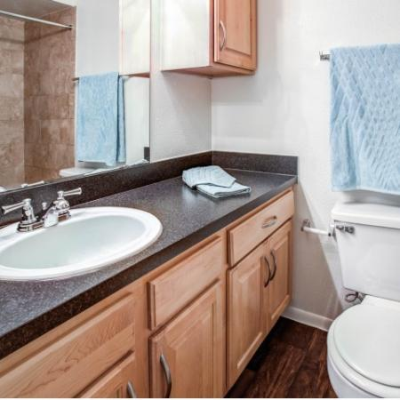 Apartments-in-largo-fl-bathroom
