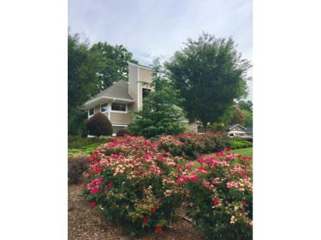 Raleigh North Carolina Apartments for Rent | VERT at Six Forks