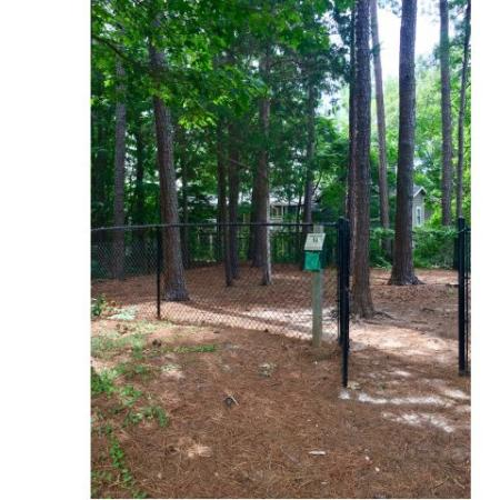 Community Bark Park | Apartments in Raleigh | VERT at Six Forks
