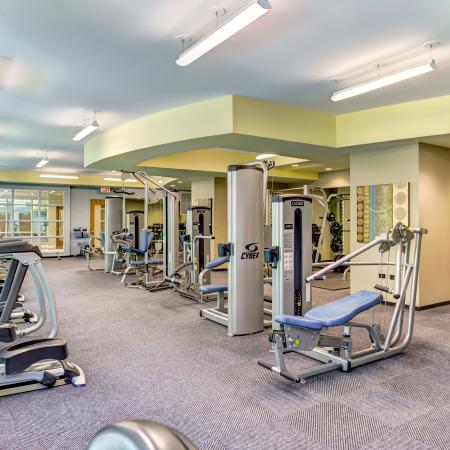 Gym equipment in the 24-hour fitness club