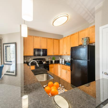 Luxurious Kitchen | frederick md rentals | Prospect Hall