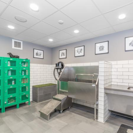 Pet spa with storage lockers, washing station and dryer
