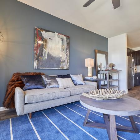 Luxury Apartments For Rent In Frisco Tx