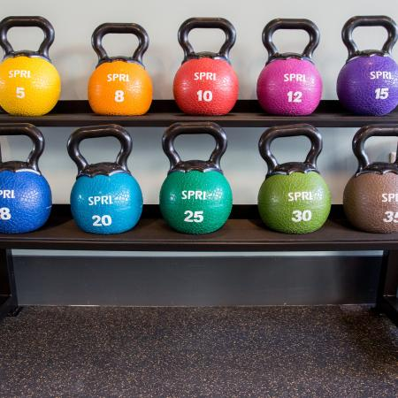 A row of colorful dumbbells in the gym