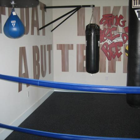 Fitness center boxing ring with 3 punching bags