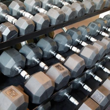 Free weight dumbbells