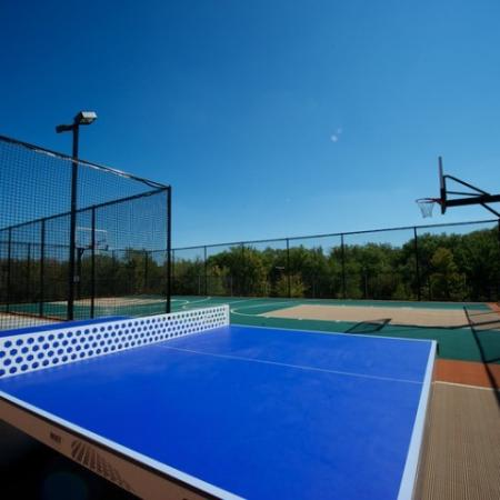 Residents Playing Basketball | Apartments in Rockwell | Rockwall Commons