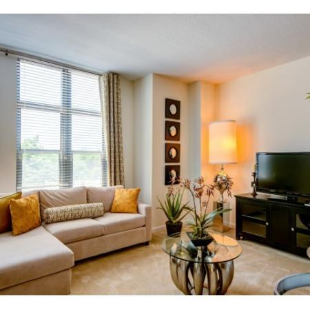 Elegant Living Room | Arlington VA Apartment | Siena Park Apartments