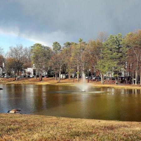 Serene Lake views and Stocked Pond