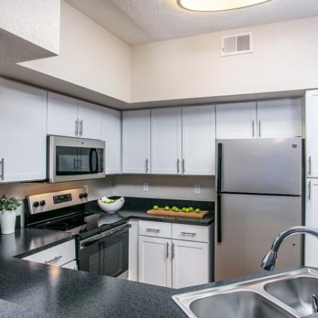 Alvista Metrowest Orlando Florida kitchen with shaker style cabinets with handles, stainless steel appliances, double sink with goose neck faucet and overhead light