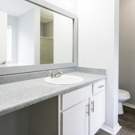 Large Bathroom Vanity Counter with Framer Mirror