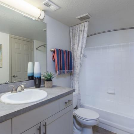 Alvista Sterling Palms Bathroom with bathtub  shower combo and single sink