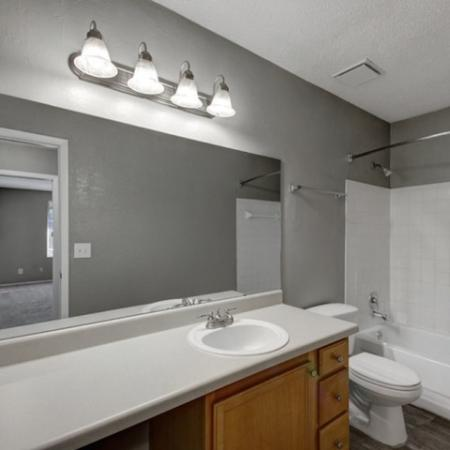 hunters way jacksonville bathroom with large mirror and countertop, single sink