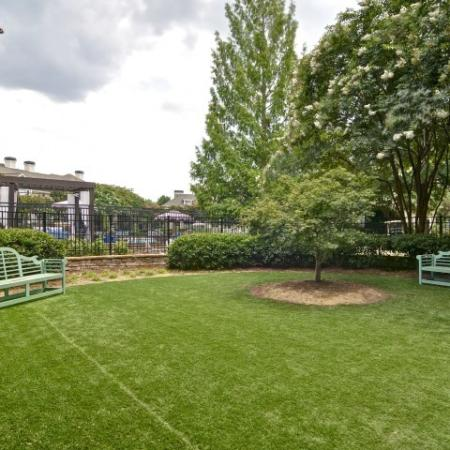 Dog Park with ample space to run and play
