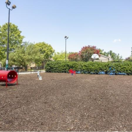 Bark park with pet stations and agility equipment