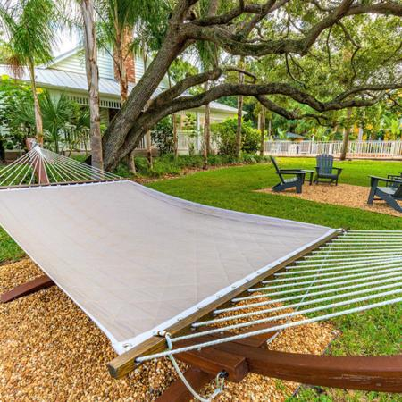 Hammock surrounded by trees