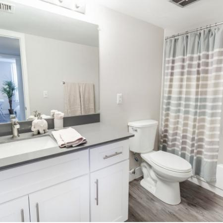 Bathroom with shower tub, toilet, sink, mirror, and lighting
