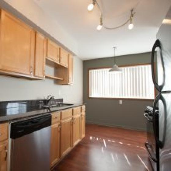 Brand New Renovation with Granite and Stainless Steel Appliances