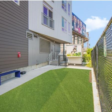 Dog Park Lawn | Allston Apartments | TRAC 75