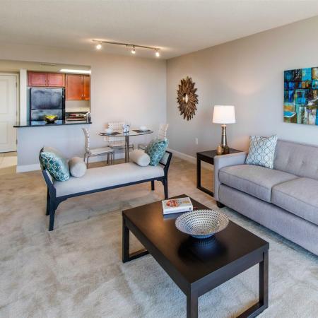 Light Filled Living Rooms