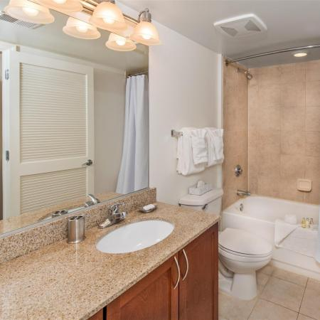 Granite Countertops and Curved Shower Rods