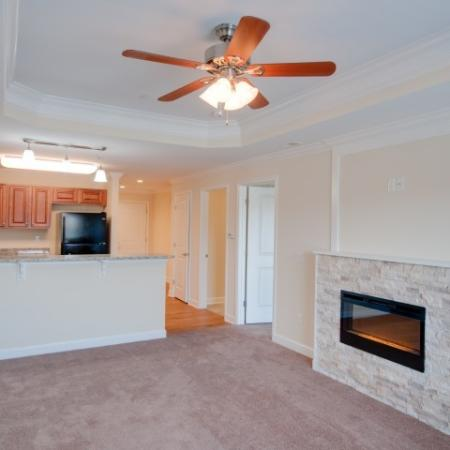 fireplaces available in some apartments