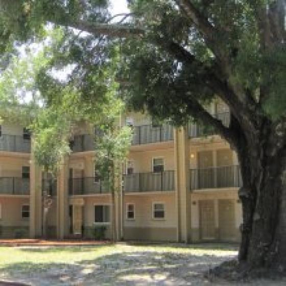 Contact our Community in TAMPA | Central Court Apartments
