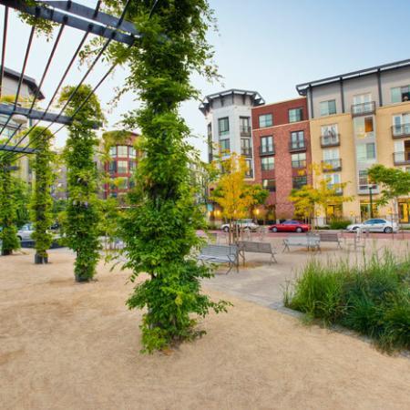 Uptown Park | The Uptown