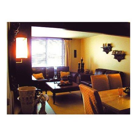 Queenswood Apartments, interior, living room, dining room, leather sofas, coffee table, large window, dining table and soft chairs
