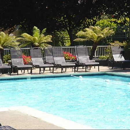 Sparkling Pool | Bayside Village