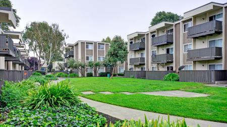 Landscaping at Turnleaf Apartments in San Jose, CA.