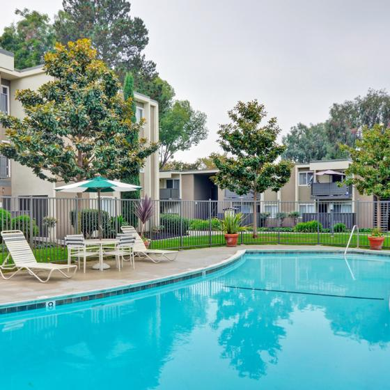 Pool Turnleaf Apartment Homes, 3201 Loma Verde Drive, San Jose, CA