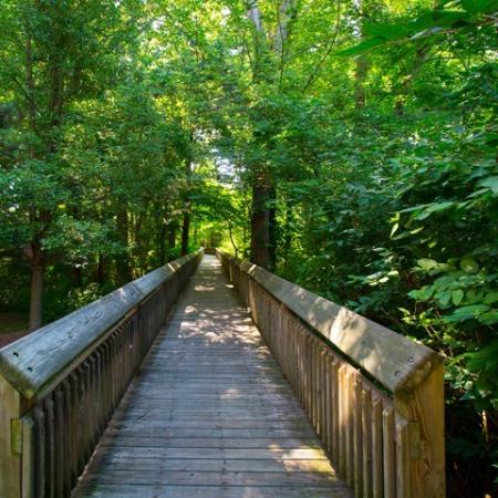 Nature preserve at Grand Reserve Orange apartments in Orange, CT