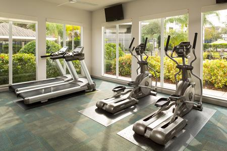 Fitness center at Arbor Walk Apartments in Tampa, FL