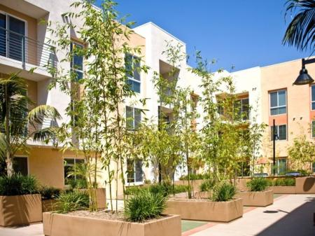 Courtyard at Grossmont Trolley Apartments in La Mesa CA