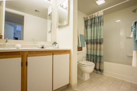 Bathroom at Summer Ridge Apartments in Kalamazoo, Michigan