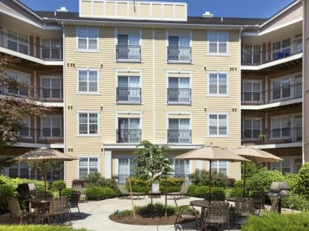 Landscaped Resident Courtyard at The Alexander at Ghent Apartment Homes in Norfolk, VA