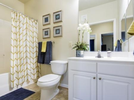 Bathroom at River Forest apartments in Chester, VA