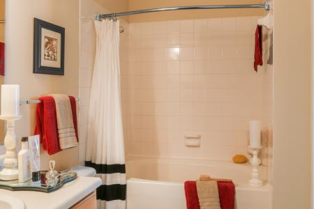 Bathroom with tile surround tub and shower at River Pointe at Den Rock Park Apartments