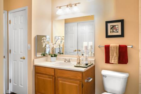 Spacious bathroom with ample storage at River Pointe at Den Rock Park Apartments