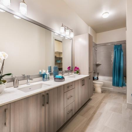 1 Bedroom Master Bath at Inwood Station apartments in Dallas TX