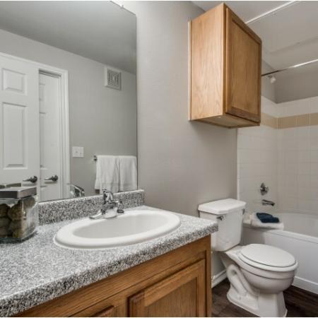 Master bathroom at Reserve at Las Brisas in Irving, TX