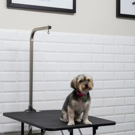 Pet spa with washing and drying stations at Mave Apartments in Stoneham, MA