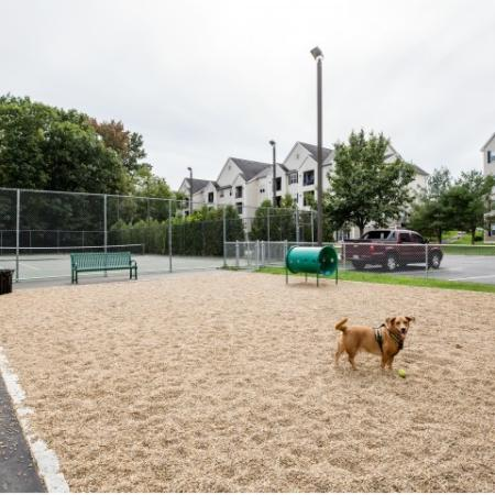 Dog Park at Heritage on the Merrimack Apartments in Bedford NH