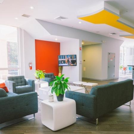 The Renegade, interior, seating area, natural light, yellow wall, orange wall, windows, gray sofas, wood floor,