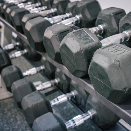 The Osceola, interior, fitness center, hand weights