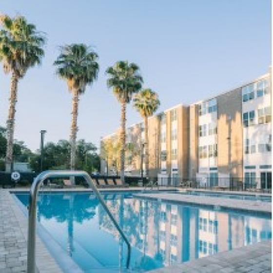 The Osceola, exterior, sparkling blue swimming pool, palm trees, yellow brick building